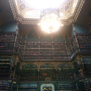 【観光】本に触れない!?まるでハリーポッターの世界のような幻想図書館