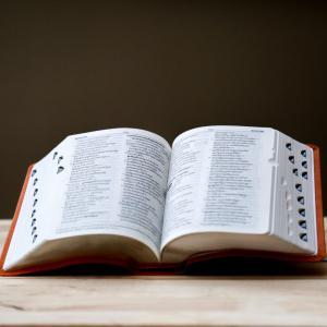 【厳選】ブラジル在住者が実際に使う、オススメのポルトガル語辞書8選