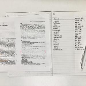 【スペイン語独学】DELEB2合格への道58