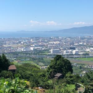 小田原厚木道路から見える山の道