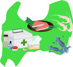 【生身と切り身】富山大学人間発達科学・人間環境システム学部後期2009年  医歯薬看護系必修