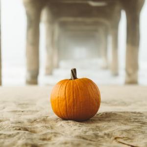 【日テレバゲット】かぼちゃのミルク煮の作り方|かぼちゃの効果的な食べ方(10月28日放送)