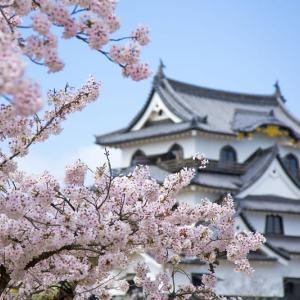 武装永世中立として大和の国・日本を取り戻す