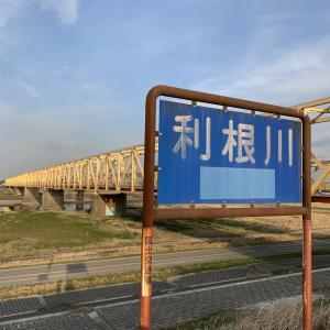 ⑦関宿城-芽吹橋(野田市)利根川ステージに突入!