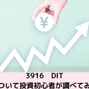 【投資】初心者による株式投資 企業分析をしてみました! DIT 証券番号3916
