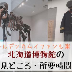 【ゴールデンカムイファンにも楽しい】北海道博物館の見どころ・所要時間を歴史好きが考える