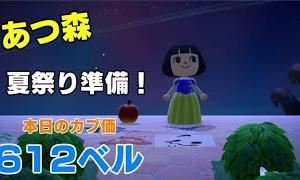 【あつ森】 カブ価612ベル!