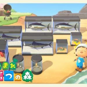 【あつ森生放送】夏の釣り大会やで!!【あつまれどうぶつの森】
