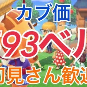 【あつ森】ライブ参加型  カブ価最高600ベル かぶ手数料なし