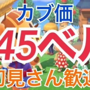 【あつ森】ライブ参加型 かぶ価高騰645ベル カブ手数料なし