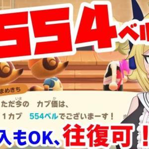 【あつ森カブ・往復OK!】554ベル!アメ購入もOK!島開放【手数料不要】