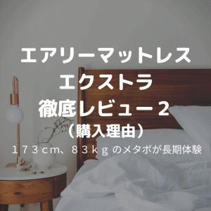 エアリーマットレス エクストラ 三つ折りタイプ AMEX-3S 徹底レビュー2(購入理由)【メタボ30代が睡眠向上を目指す】