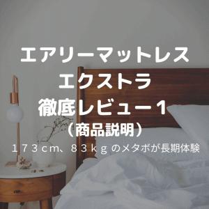 エアリーマットレス エクストラ 三つ折りタイプ AMEX-3S 徹底レビュー1(商品説明)【メタボ30代が睡眠向上を目指す】