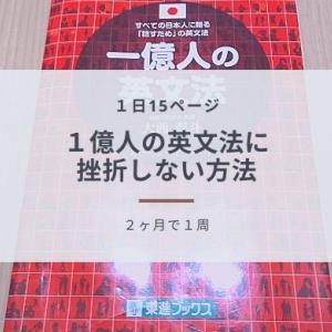 英語学習者必見!「1億人の英文法」でビジネス英語を習得した私のおすすめ勉強法
