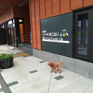 北海道から本州へ