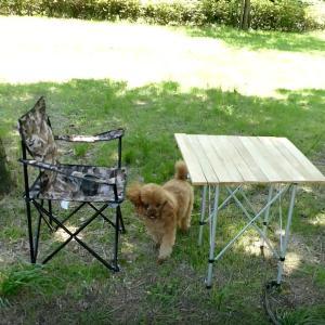 日本一周で使った椅子とテーブル。ロールテーブルお薦めです。