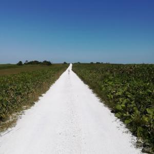最北の地にある「白い道」は、必見。