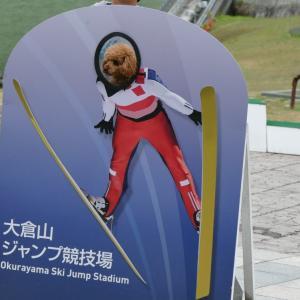 日本一周犬、茶々丸写真集PART3 北海道編①