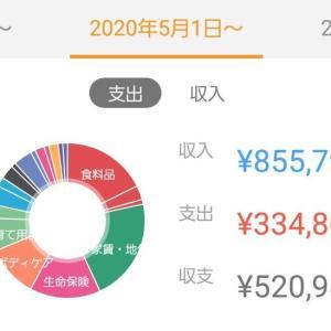 アラサー3人家族の家計簿公開【2020年5月】出産手当金が入り大幅黒字化!