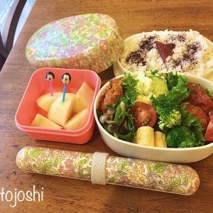 初めてのお弁当作りを簡単にする3つの作り置き?!準備するもの特集!