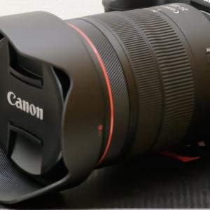 【スペック比較】Canon EOSR6とEOSRを比較してみよう