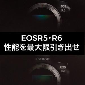 【Canon EOSR5・R6】カメラ性能を最大限引き出そう