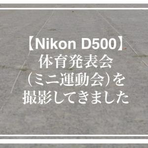 【Nikon D500】体育発表会(ミニ運動会)撮影してきました