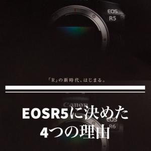 Canon EOSR5に決めた4つの理由