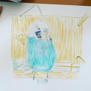 はーちゃんを描いてみました