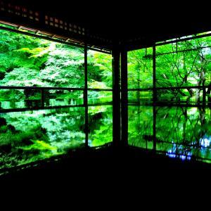 京都3日目 本当なら京都大作戦最終日。。。