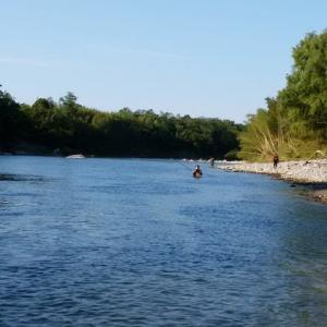 釣り日和 Team絆釣は利根川へ