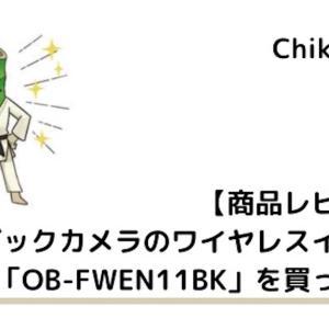 ビックカメラのワイヤレスイヤホン「OB-FWEN11BK」を買ってみた【商品レビュー】