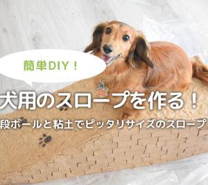 犬用スロープを手作り!ダンボールと粘土でDIYする方法。
