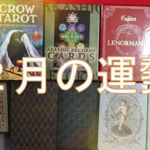 『2021年2月の運勢』★観る★タロット・オラクルカードリーディング