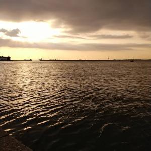 「徳島釣り」元根井漁港で早朝ジギング