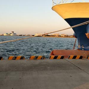 「徳島釣り」和田島の埠頭でジギング