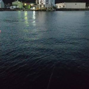 「徳島釣り」小松島みなと交流センター横でジギング