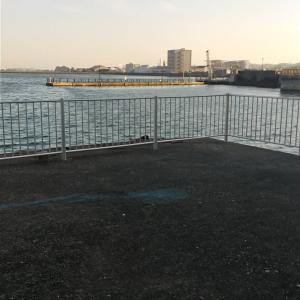 「徳島釣り」遅めの釣り初め in 小松島(メバル&根魚)