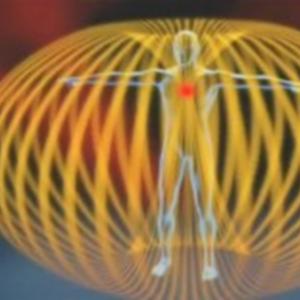 ハート・心臓のもつエネルギー  の魅力