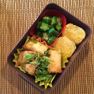 今日のお弁当と野菜高騰の今こそ食べたい豆苗のパワー。