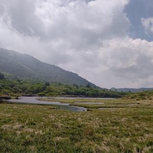 『覚満淵』〜小尾瀬と呼ばれる小さな湿原〜