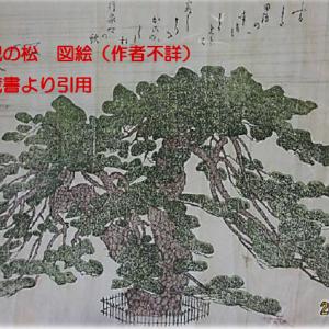 霊松『鹿児の松』とともに歴史を刻み続ける薬王山常住寺