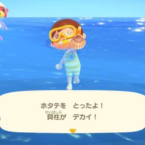 【あつ森攻略】7月から採れる海の幸まとめ