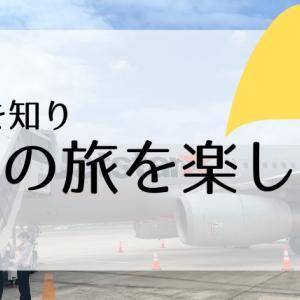 【子連れで飛行機】LCCって何?成田からの就航先や機内持ち込み荷物について知っておこう