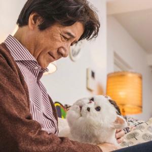 【おじさまと猫 第4話 感想】ふくまるのぬいぐるみが欲しい