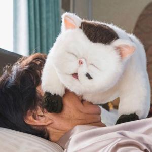 【おじさまと猫 第5話 感想】小林、いい奴!!