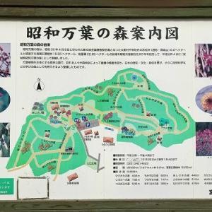 ようこそ。昭和万葉の森ファンのブログです。