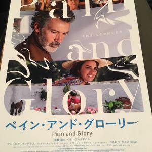 文化村で映画「ペイン&グローリー」とフレンチ料理