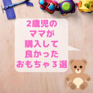 2歳児のママが買ってよかったおもちゃ3選!!