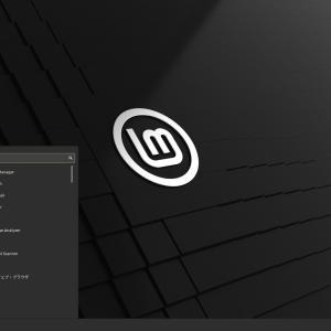 2020.06 Linux Mint 20 beta ulyanaを、Lenovo G580で日本語起動